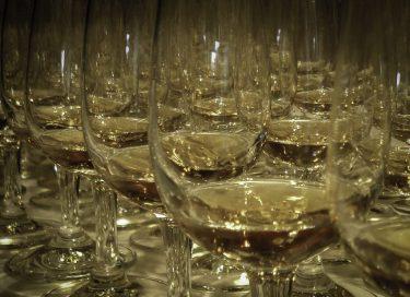 Whisky glasses lined up for a tasting. Photo ©2016, Mark Gillespie/CaskStrength Media.