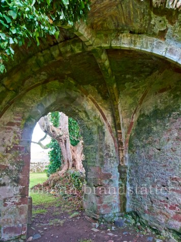 Arched roof, Lindores Abbey