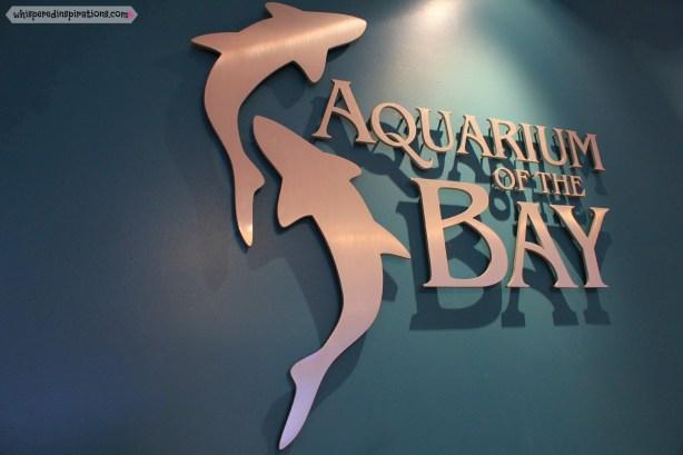 CityPASS-Aquarium-01