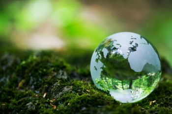 Earth Day 2014: 5 Tips for A Greener World & Learning Through Netflix. #StreamTeam