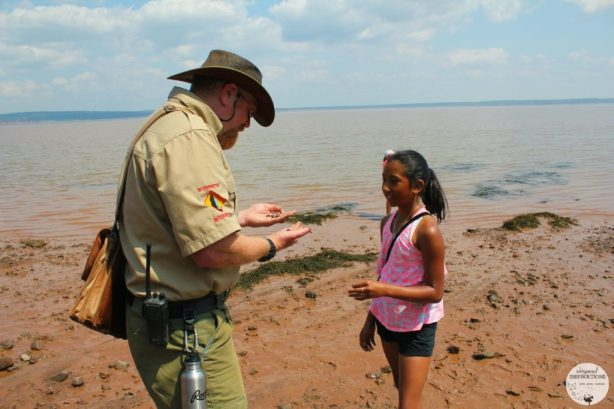 Kevin Snair shows a girl a hermit crab, the Bay of Fundy is in the distance as they walk the ocean floor at Hopewell Rocks.