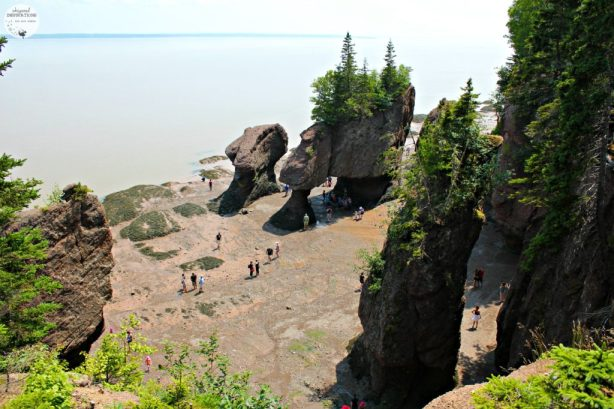 If you're traveling to New Brunswick, make sure to make the Hopewell Rocks one of your stops. It's majestic. #travel