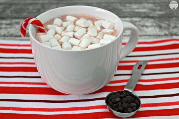 Mint-Hot-Chocolate-For-Two-07