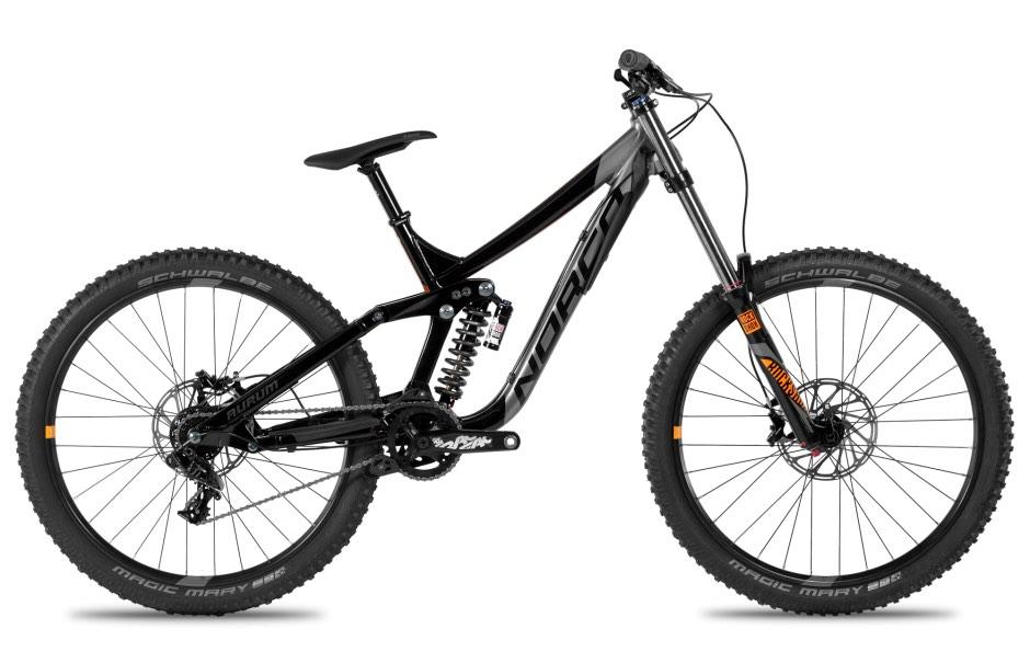 standard downhill bike rental