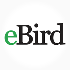 Getting Started with eBird