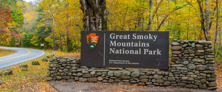 Colours galore @ the Great Smoky Mountains!
