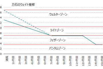 力石の減量グラフ