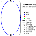 Walk and halt transitions in an oval