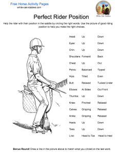 perfect-rider-position