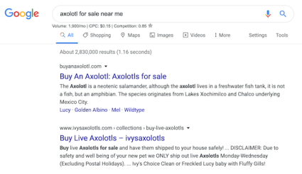 A web search with results for an axolotl near me