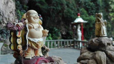 cheeky Buddha