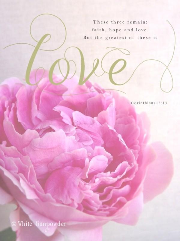 valentine's Day, Peony, Greatest… Love