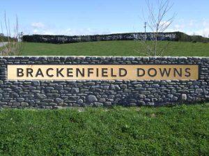 Brackenfield Downs