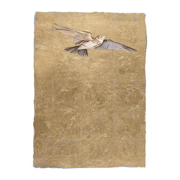 The Lost Words - Lark by Jackie Morris - Premium Limited Edition