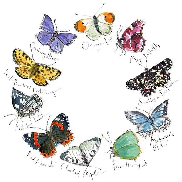 Butterflies I - Madeleine Floyd - Limited Edition