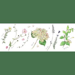 Summer Flowers 1 - Madeleine Floyd - Limited Edition