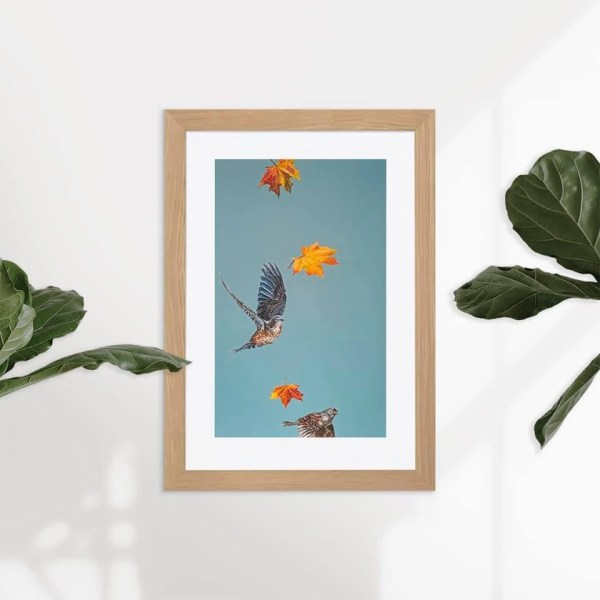 New Leaves - Natalie Toplass - Limited Edition