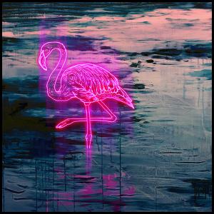 Flamingo - Tom Lewis - Limited Edition