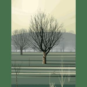 Morning Shadows - Dan Crisp - Limited Edition