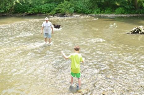 Wading through the creek