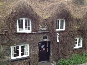 The best Tearoom-Llanrwst, Wales