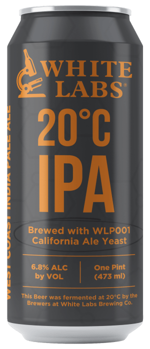 20C Beer Can Mock-Up2