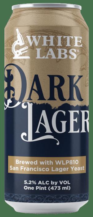 Dark Lager Beer Can Mock-Up1