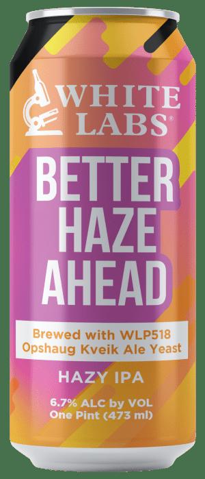 Haze Beer Can Mock-Up1