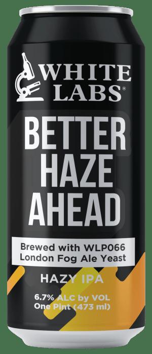 Haze Beer Can Mock-Up2