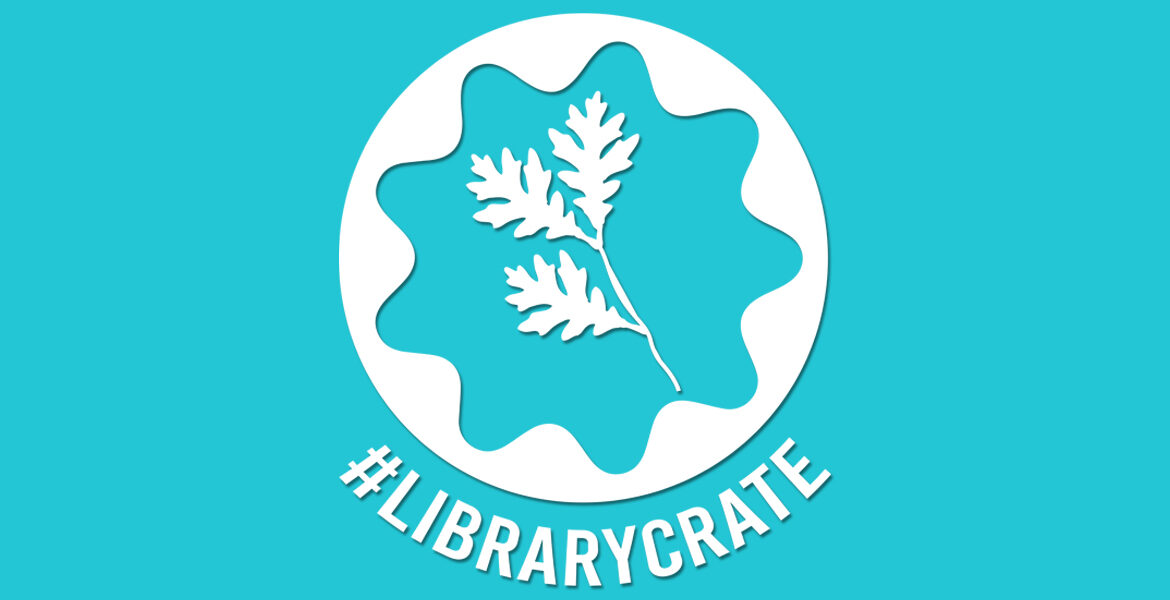 #LIBRARYCRATE: YA Library Book Subscription Service