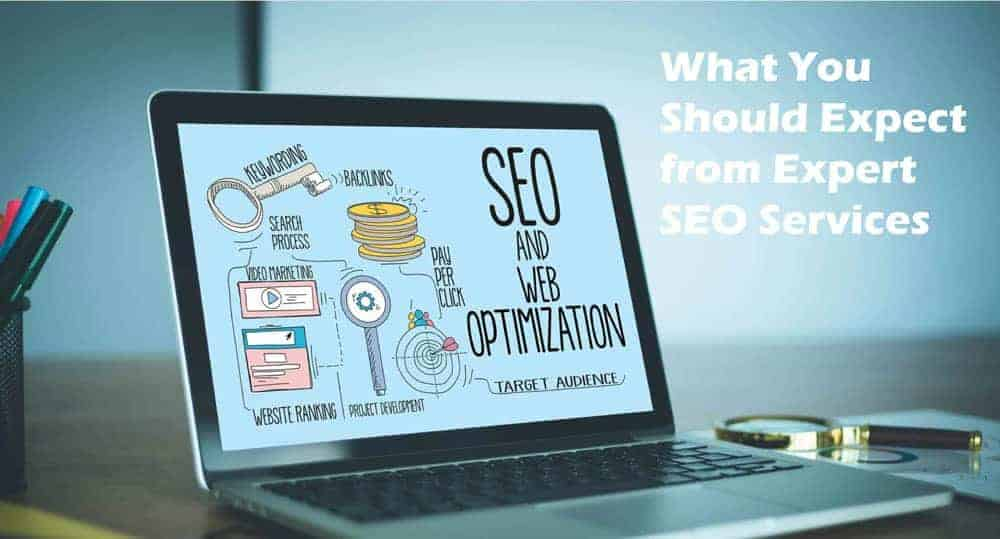 expert seo services