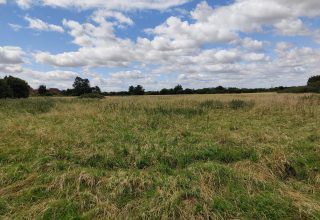 Appeal Submission: Land West of High Street, Arlesey