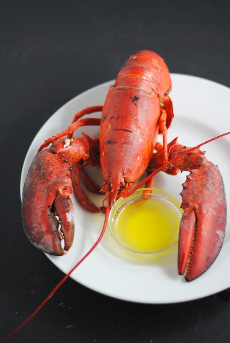 Perfectly steamed lobster