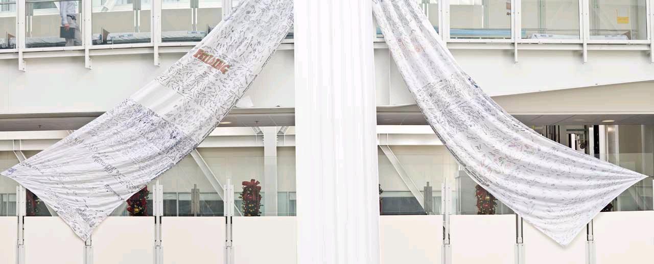 White Ribbon hanging 2