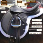 Horse Equipment And Use White Rose Equestrian