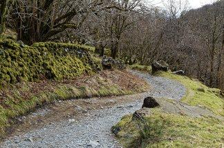 Path near Rough Sides