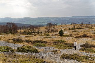 Heading down towards Whitbarrow Scar path from summit cairn