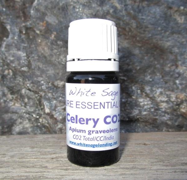 Celery CO2 Extract 5 ml