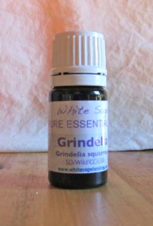 grindelia essential oil 2