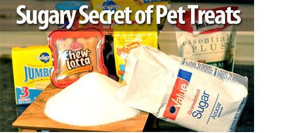 Sugary Secret of Pet Treats