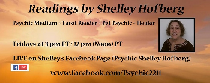 Shelley FB Live Banner