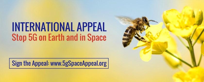 International 5G Appeal