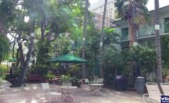 ホワイトサンズホテル-バーベキュー
