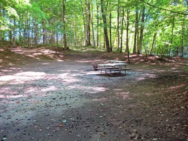 Family Camping Wooded Site