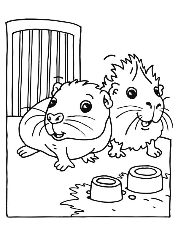 10903 pig free clipart 76