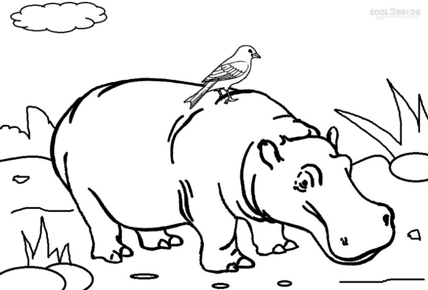 1321 hippo free clipart 8