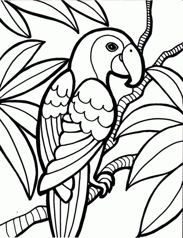 42 most killer rainforest animal coloring page elegant ideas