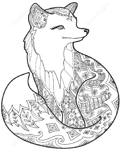 animal coloring pages for adults at getdrawings free
