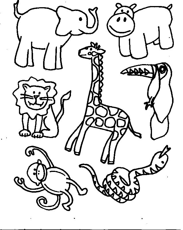 animals printable coloring pages free printable coloring