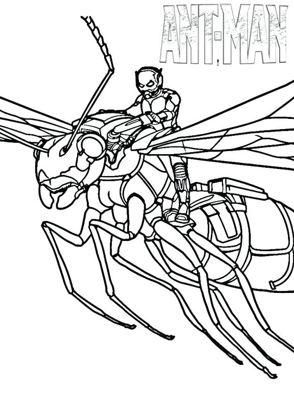 ant man coloring pages best coloring pages for kids